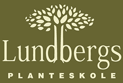 lundberg-logo-vector-green-bg